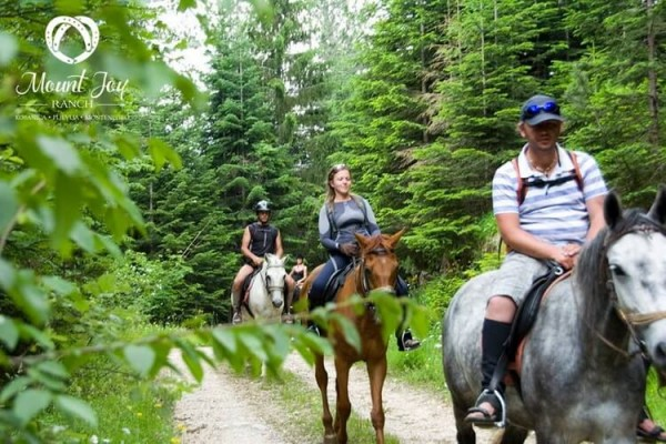 mount joy ranch montenegro horseback riding tours 1