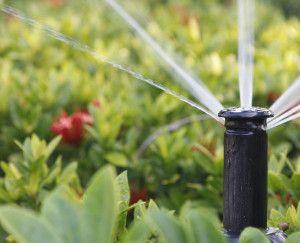 garden lux sistemi za navodnjavanje