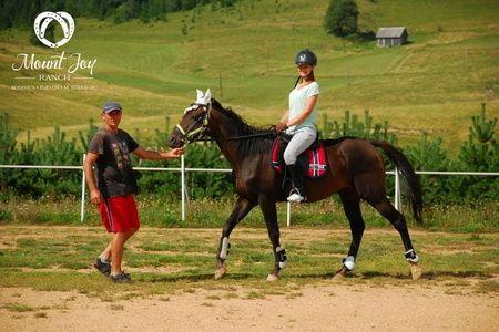 mount joy ranch montenegro horseback riding lessons