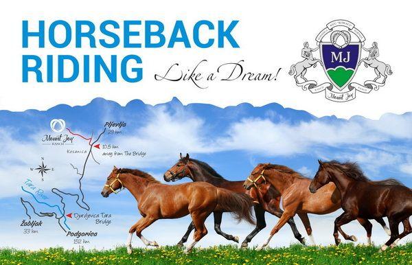 mount joy ranch horseback riding