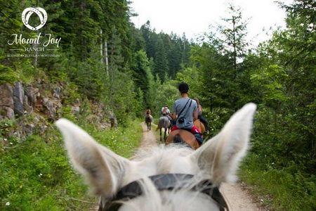 mount joy ranch montenegro horseback riding tours 2