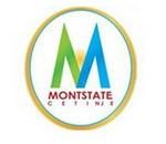 mjn_montstate-600x390